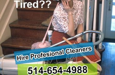Professional Maid Cleaners