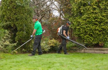 Garden Cleaning Services