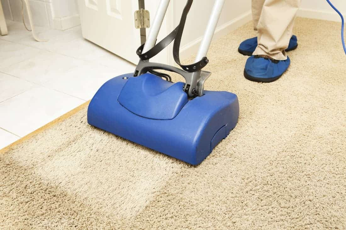 Organic Rug Cleaning Service