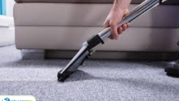 menage total carpet cleaning